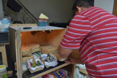 inkubator untuk anak lovebird