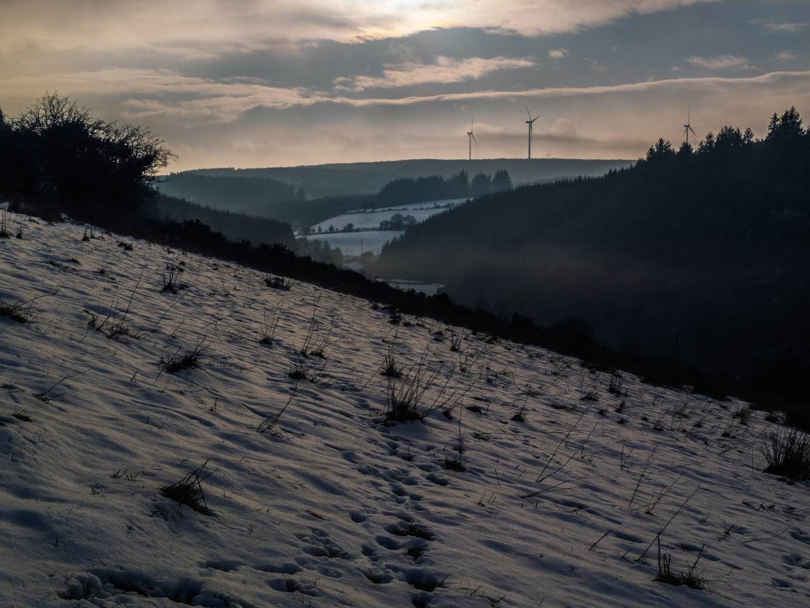 Snowy mountains and forestry before the sunset in the Boggeragh Mountains in Co.Cork.