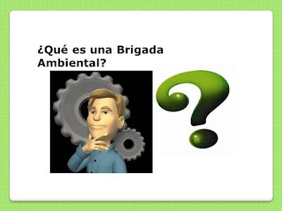 Brigadas Ambientalistas