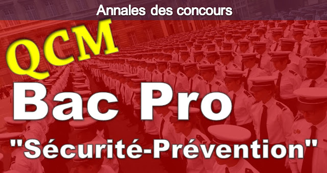 bac pro prevention et securite