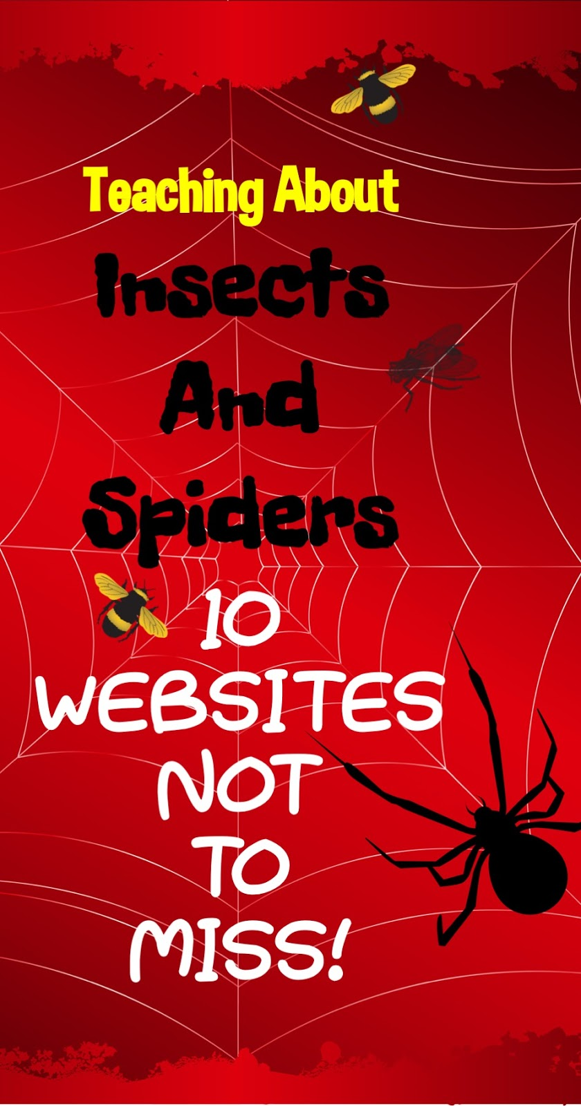 dragon s den curriculum teaching about insects and spiders 10