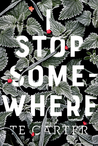 I Stop Somewhere by T. E. Carter