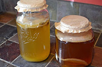 SCOBY