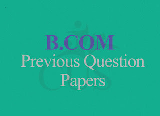 BCOM Computerized Accounting With Tally Previous Question Papers