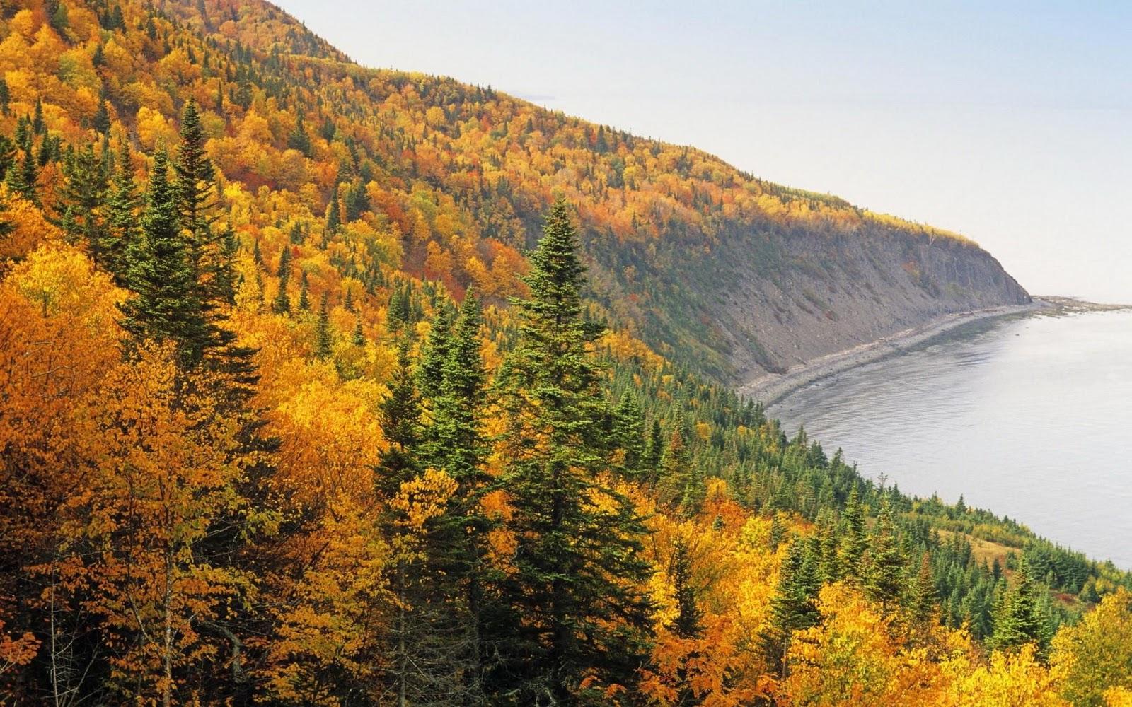 Best Desktop HD Wallpaper - Autumn Wallpapers
