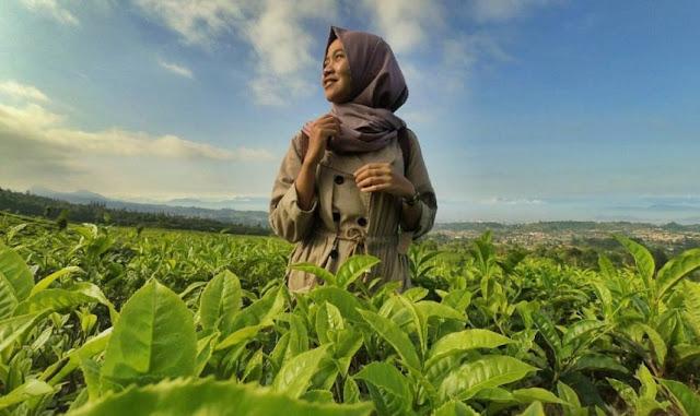 Promo Tempat Wisata Di Bandung