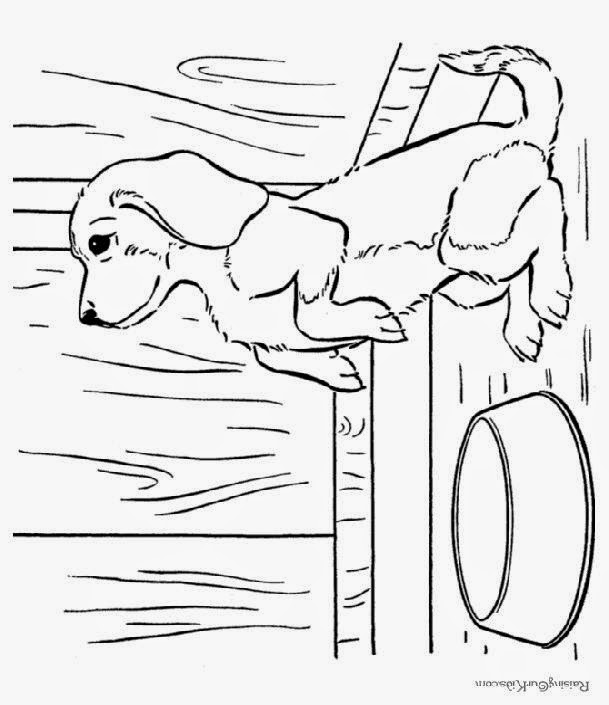 coloring pages of puppy love colorings net