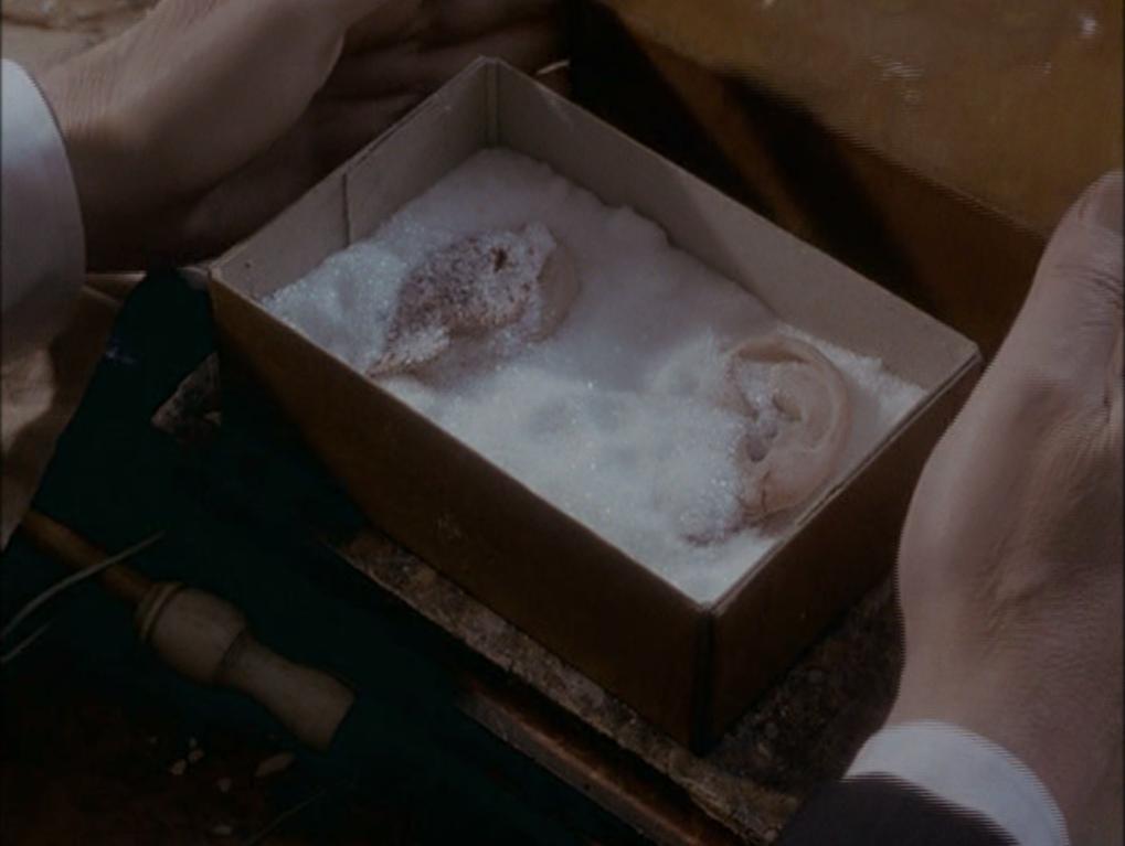 The Memoirs of Sherlock Holmes: The Cardboard Box (Sarah Hellings