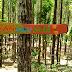 Baper Nikah di Hutan Pinus Winong Wajak Malang