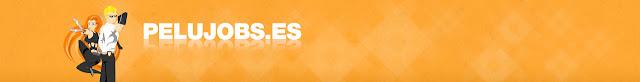 http://pelujobs.es/ofertas-de-trabajo.php?buscar=&buscar_dfm=&buscar_comunidad[]=14&submit=Buscar