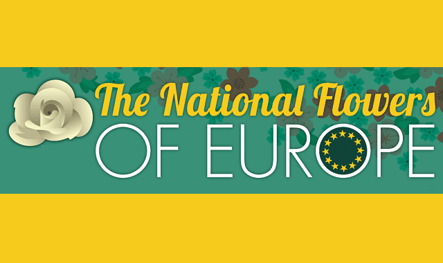 The National Flowers of Europe