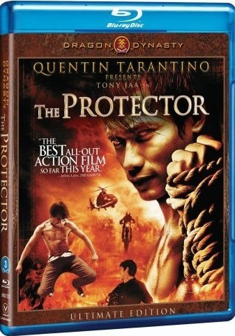 The Protector 2005 Dual Audio Hindi Bluray Movie Download