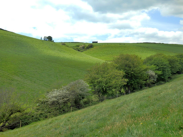 Hills and green fields from Pentewan to Mavagissey
