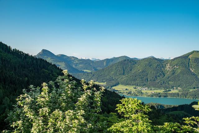 Schober und Frauenkopf  Wanderung Fuschl am See  Wandern FuschlseeRegion Salzkammergut 02