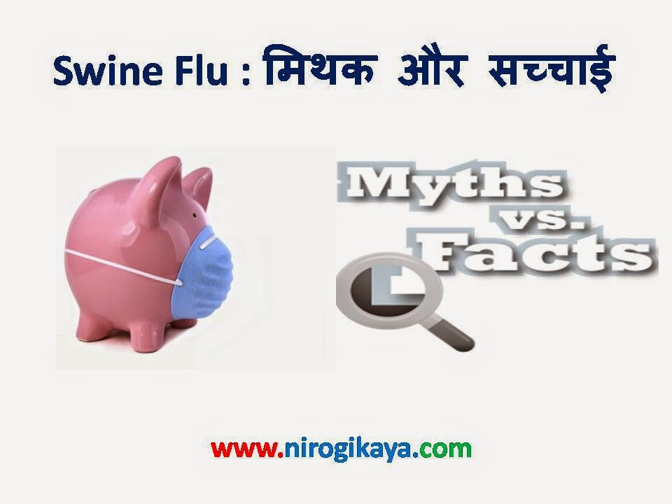 Swine Flu Myths and Facts in Hindi