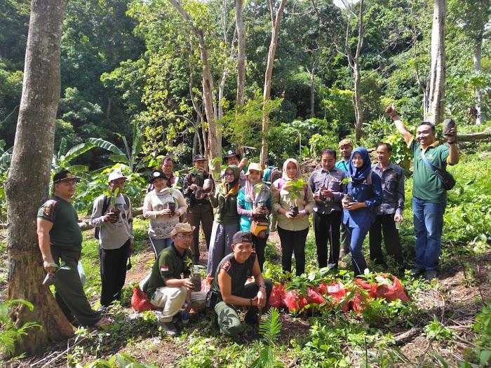 KPH XIII Adakan Kegiatan Penanaman Ratusan Pohon Pala Di Gunung Raja Basa