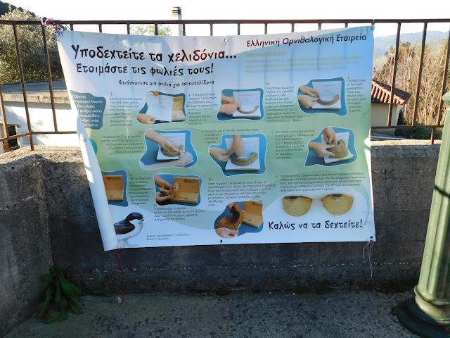 Ηγουμενίτσα: Ολοκληρώθηκαν τα χελιδονίσματα 2017