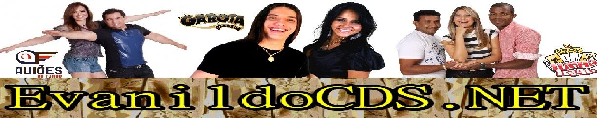 cd solteiroes do forro dezembro 2012