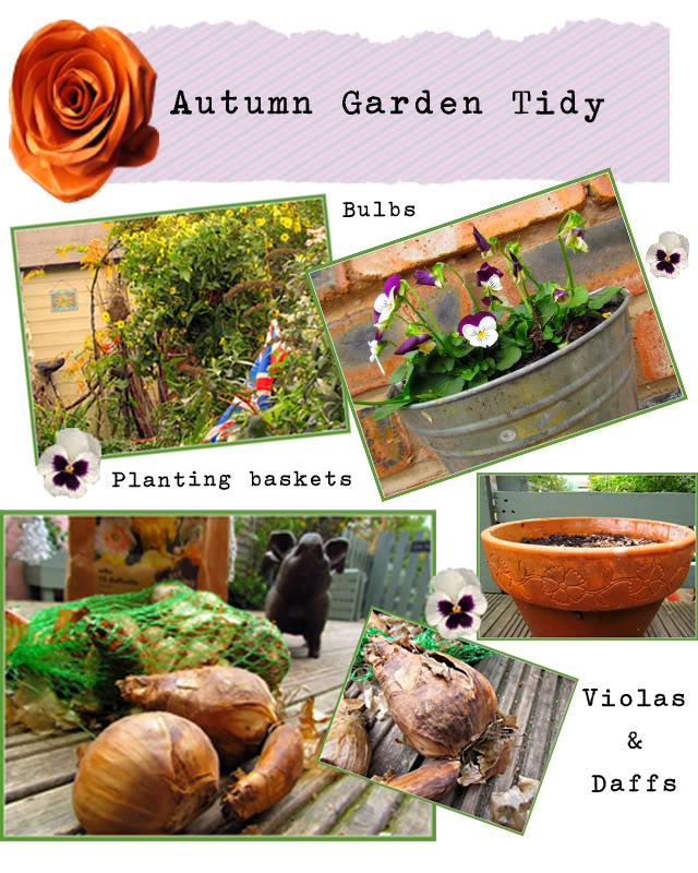Autumn garden tidying