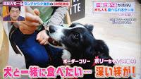 http://border-polly.blogspot.jp/2017/06/blog-post.html