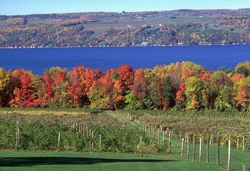 With So Many Beautiful Settings At The Wineries Or On Lakefronts Finger Lakes Really Have Become A Prime Location For Destination Weddings