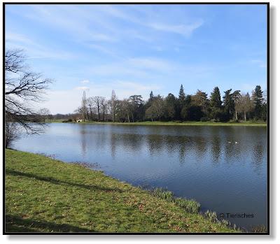 Wasserarm im Wörlitzer Park