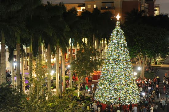 11th annual Tree Lighting Ceremony at Merrick Park & Coconut Grove Grapevine: 11th annual Tree Lighting Ceremony at ...