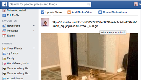 Upload Gif To Facebook Wall<br/>