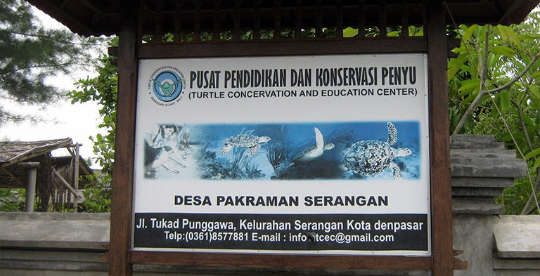Bali Turtle Conservation and Education Centre