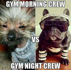 gym pagi