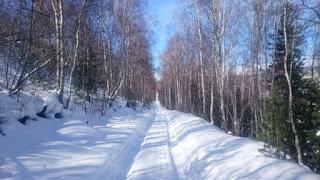 Дорога вдоль жд от станции Поворот