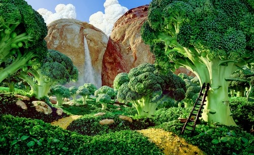 15-Broccoli-Forest-Foodscapes-British-Photographer-Carl-Warner-Food- Vegetables-Fruit-Meat-www-designstack-co