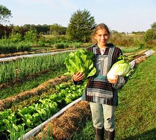 alimentacion organica