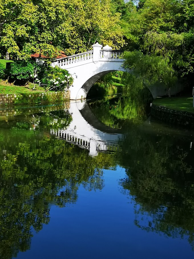Berjogging Di Perdana Botanical Garden Yang Ceria