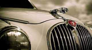 The symbol of jaguar car
