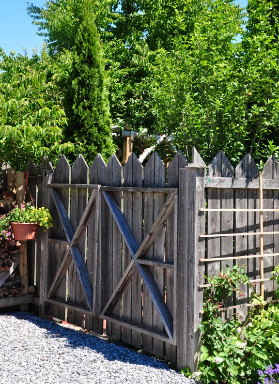 Three Dogs in a Garden: Fancy Fence Work