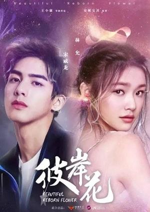 Beautiful Reborn Flower 2020, 彼岸花, Synopsis,  Cast