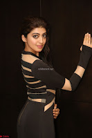 Pranitha Subhash in a skin tight backless brown gown at 64th Jio Filmfare Awards South ~  Exclusive 131.JPG