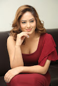 nikisha patel new sizzling photos gallery-thumbnail-3