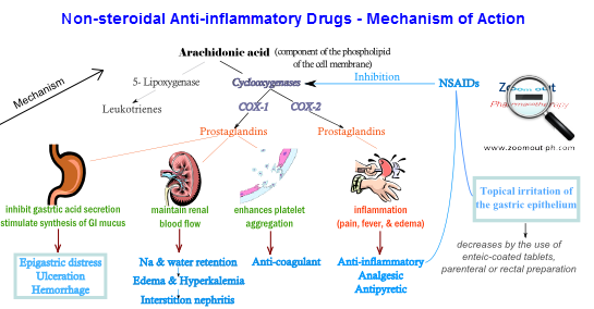 non steroidal anti inflammatory drugs powerpoint