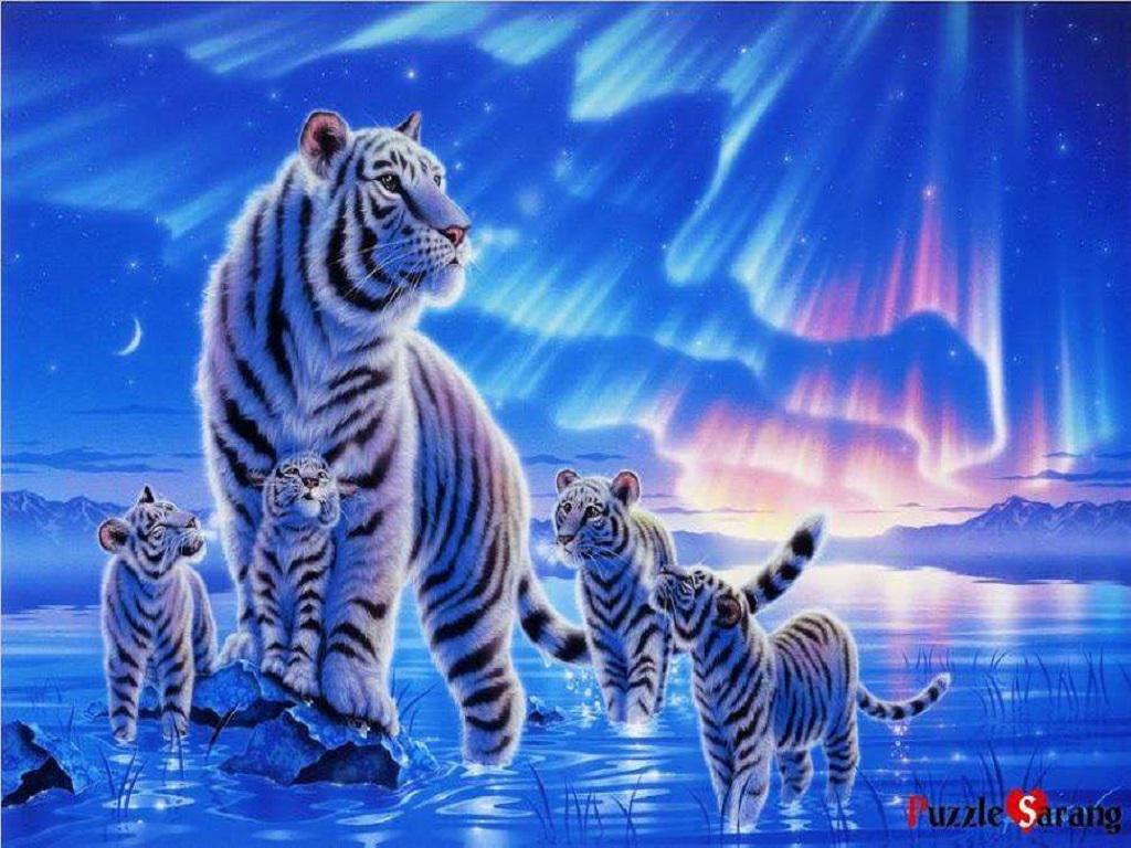 Wallpapers 1920x1080: Wallpapers Tiger / Tigre hd 1920x1080