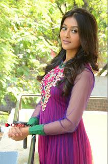 Actress Pooja Jhaveri Latest Stills in Purple Salwar Kameezt at Dwaraka Success Meet  0147.JPG