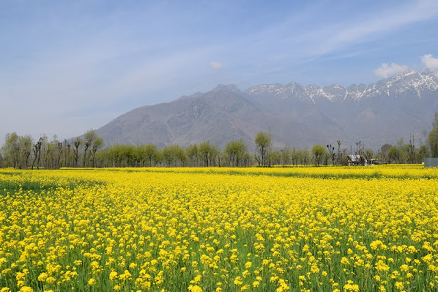 backpacking to kashmir