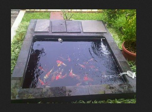 Cara Membuat Kolam Ikan Kecil Minimalis