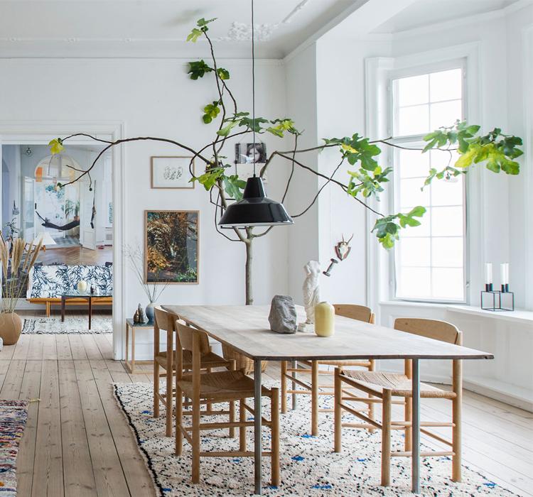 abbastanza Piante da esterni a interni | Blog Arredamento - Interior Design SN64