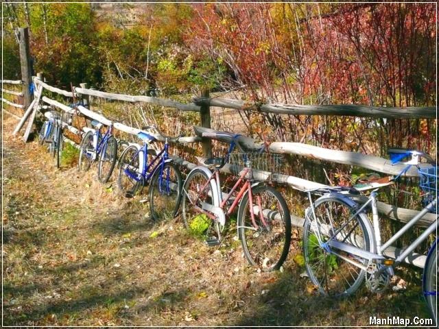 Mùa Thu và những chiếc xe đạp