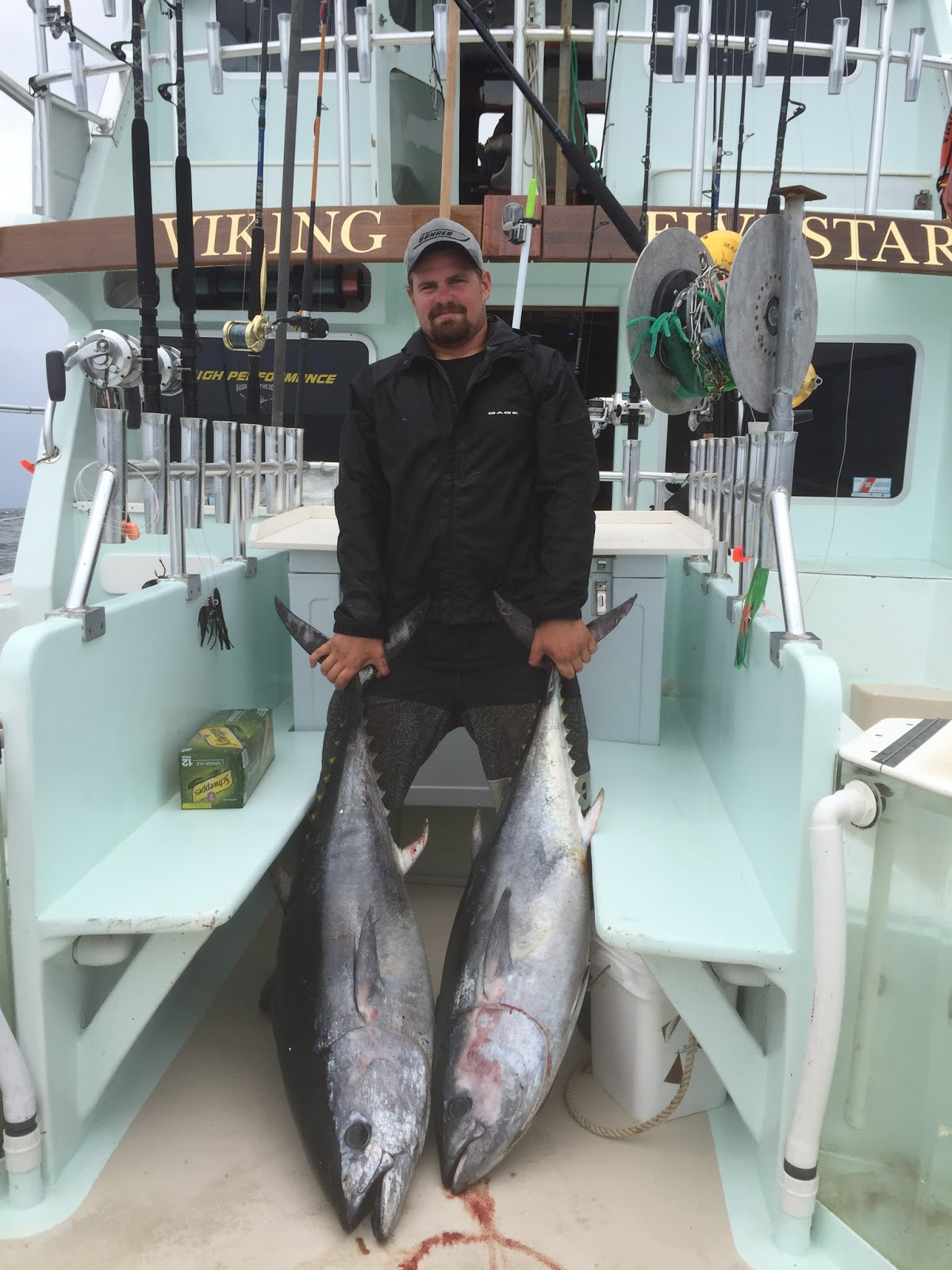 Viking fivestar fishing report 24 hour tuna report for Viking fishing report