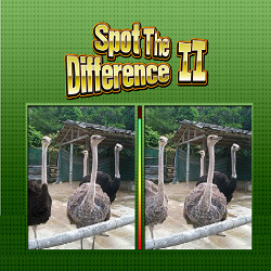 Spot the Difference II (Observation Brain Game)