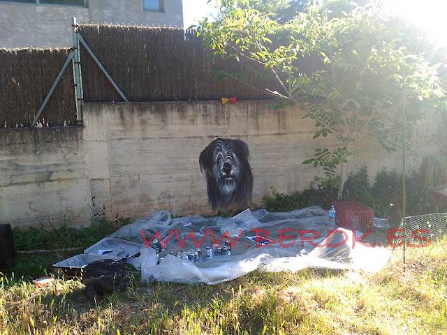 graffiti perro terraza