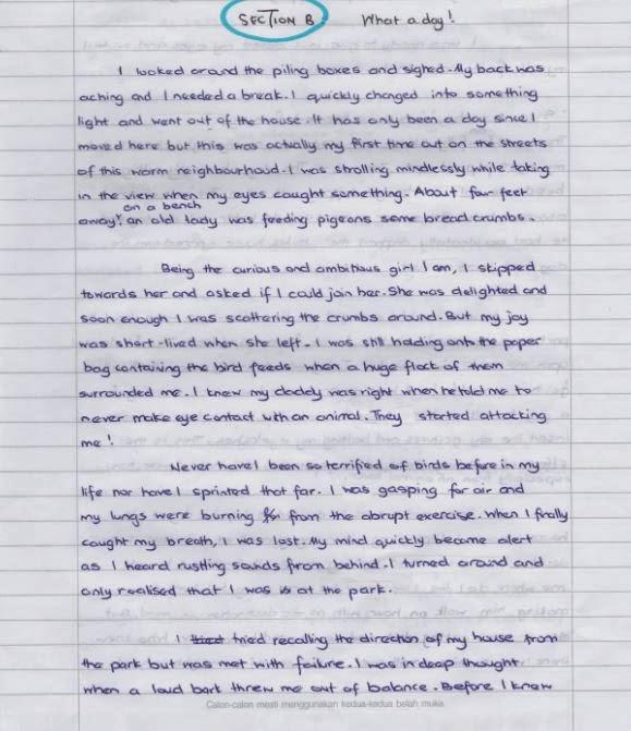Descriptive essay as a form of continuous writing